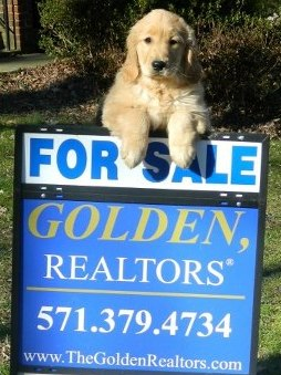 Golden Realtors Office